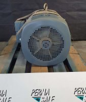 EMWB Fußmotor 30KW Typ DM1200L-4