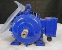 Leumann & Uhlmann Fussmotor 3,3 KW EX Typ E112MAE3-2BB